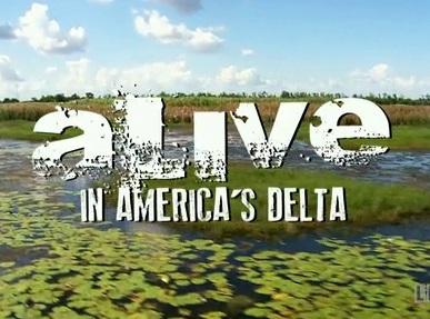 Alive! In America's Delta