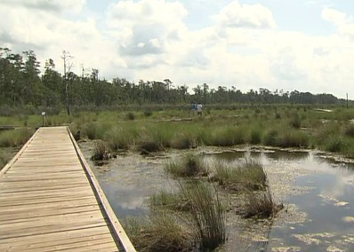 Fontainebleau State Park in Mandeville