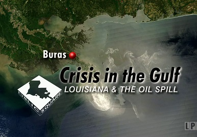 Crisis in the Gulf: Louisiana & The Oil Spill