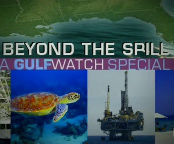 Beyond the Spill: A GulfWatch Special