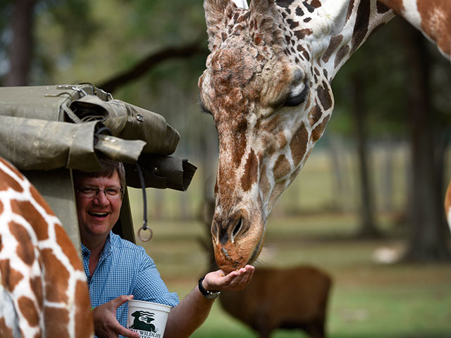 Charlie Whinham with a giraffe at the Global Wildlife Center