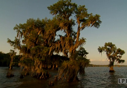 Lake Fausse Pointe in Louisiana