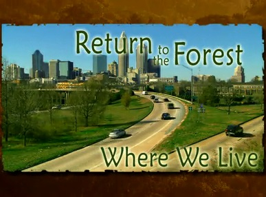 Return to the Forest Where We Live