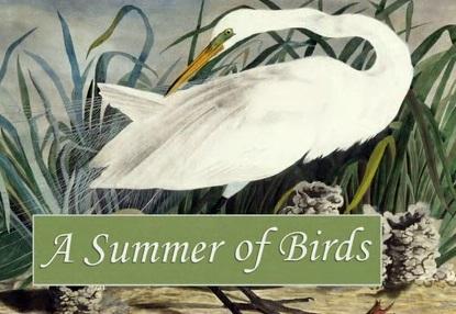 A Summer of Birds